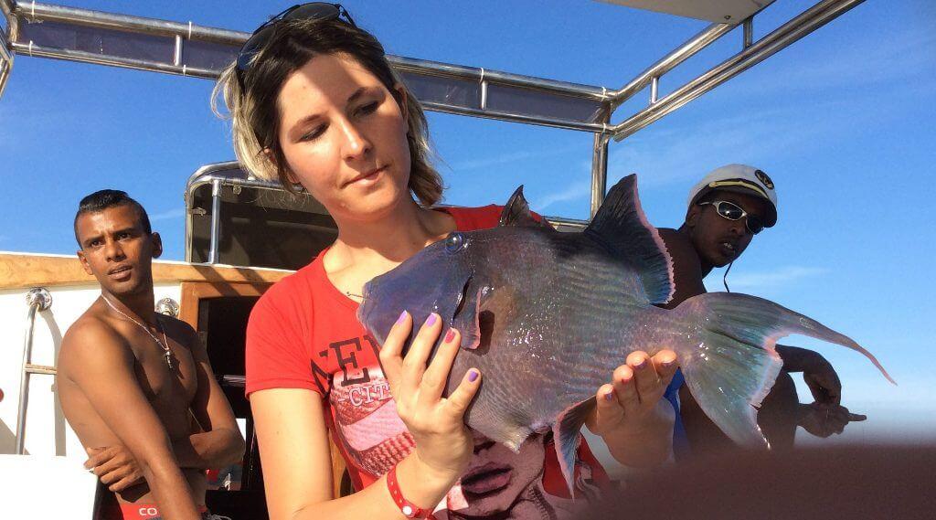 Pescuit la Marea Roșie