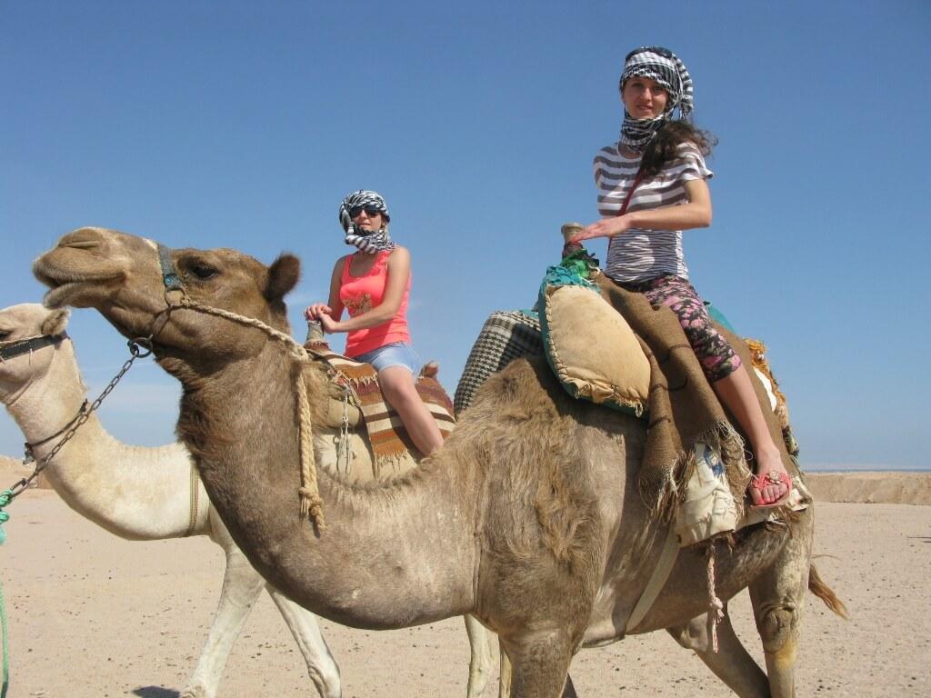 Sharm El Sheikh vs. Hurghada