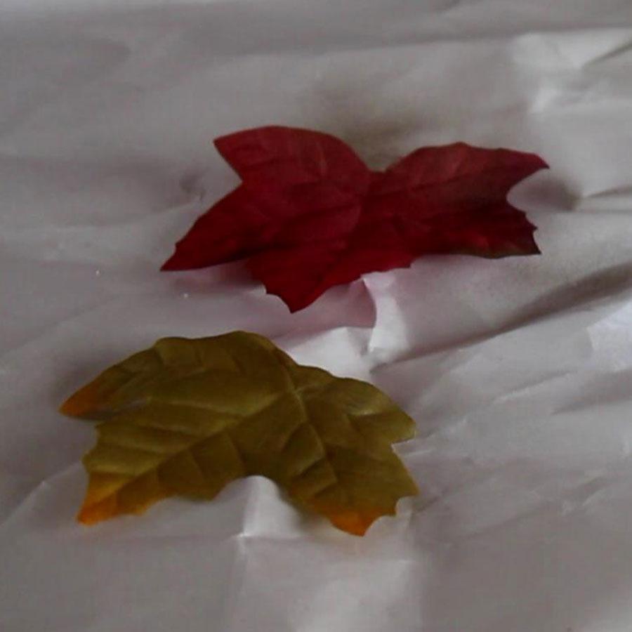 DIY Fall decor - Small Shadow Box | Home Decorations | Fall Crafts | Seasonal Decor