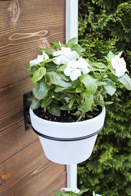 flowers in a planter wall hook on Vertical Planter DIY stand