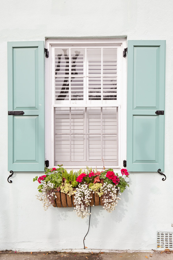 Window Box Ideas from Charleston