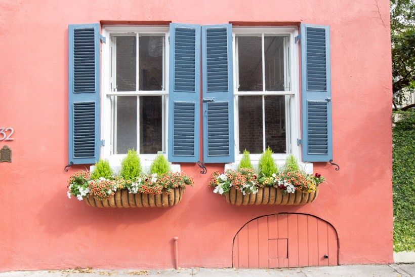 Spring Window Box ideas in Charleston