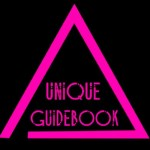 Link to Unique Guidebook PDF