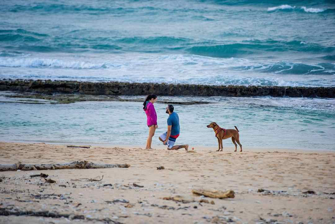 man proposing to girlfriend on a beach in maui