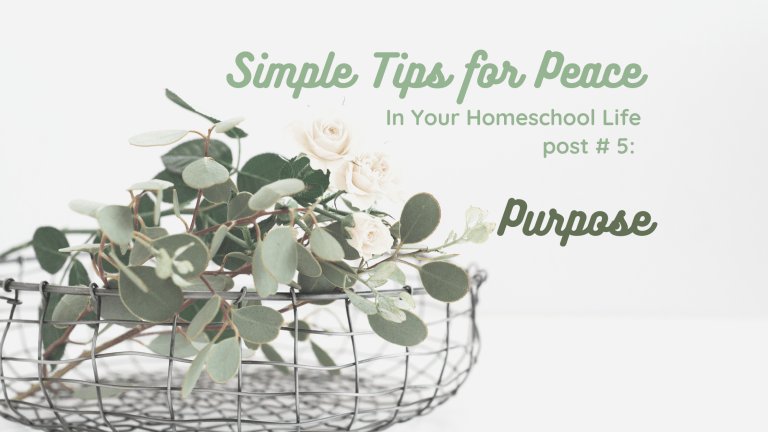 Simple Tips for Peace in Your Homeschool Life, part 5