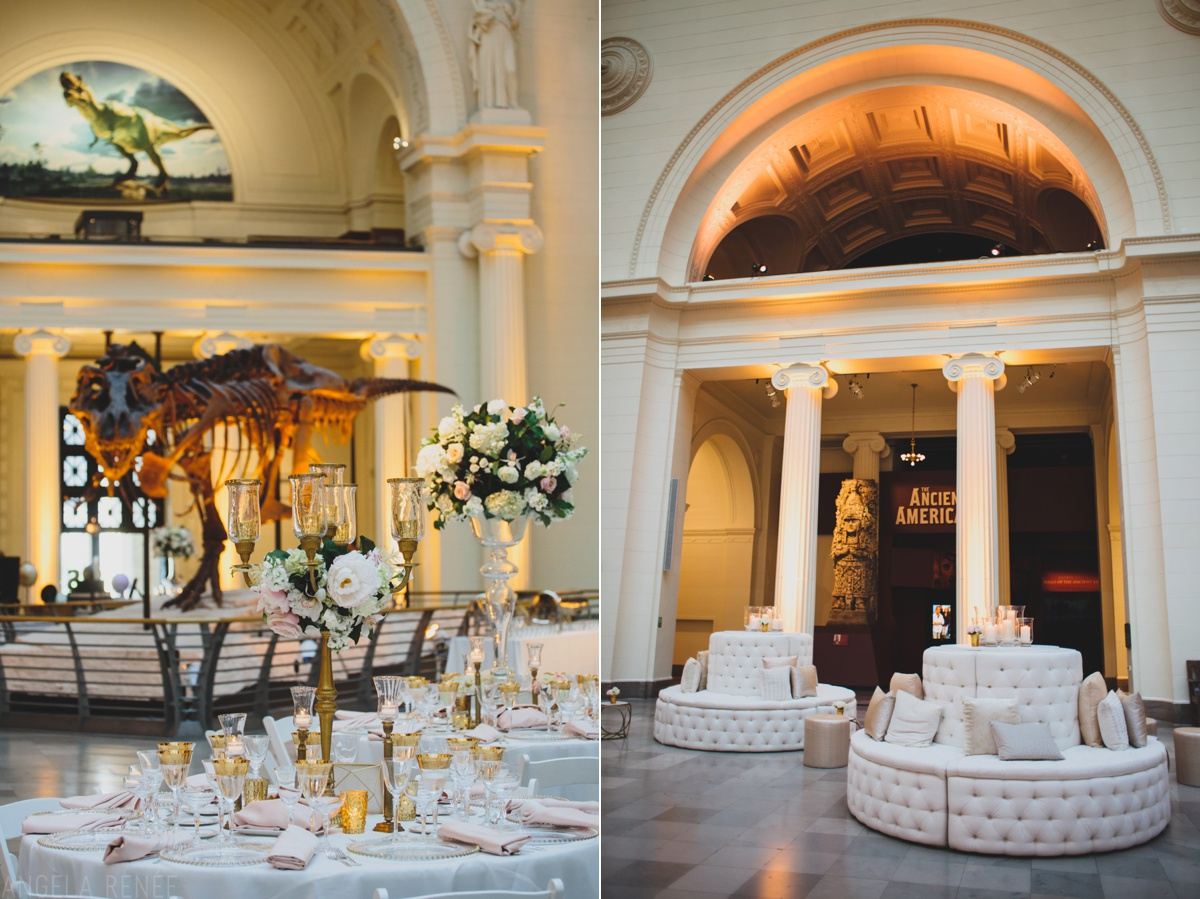 Chicago Wedding Photographer Chicago Field Museum Weddings
