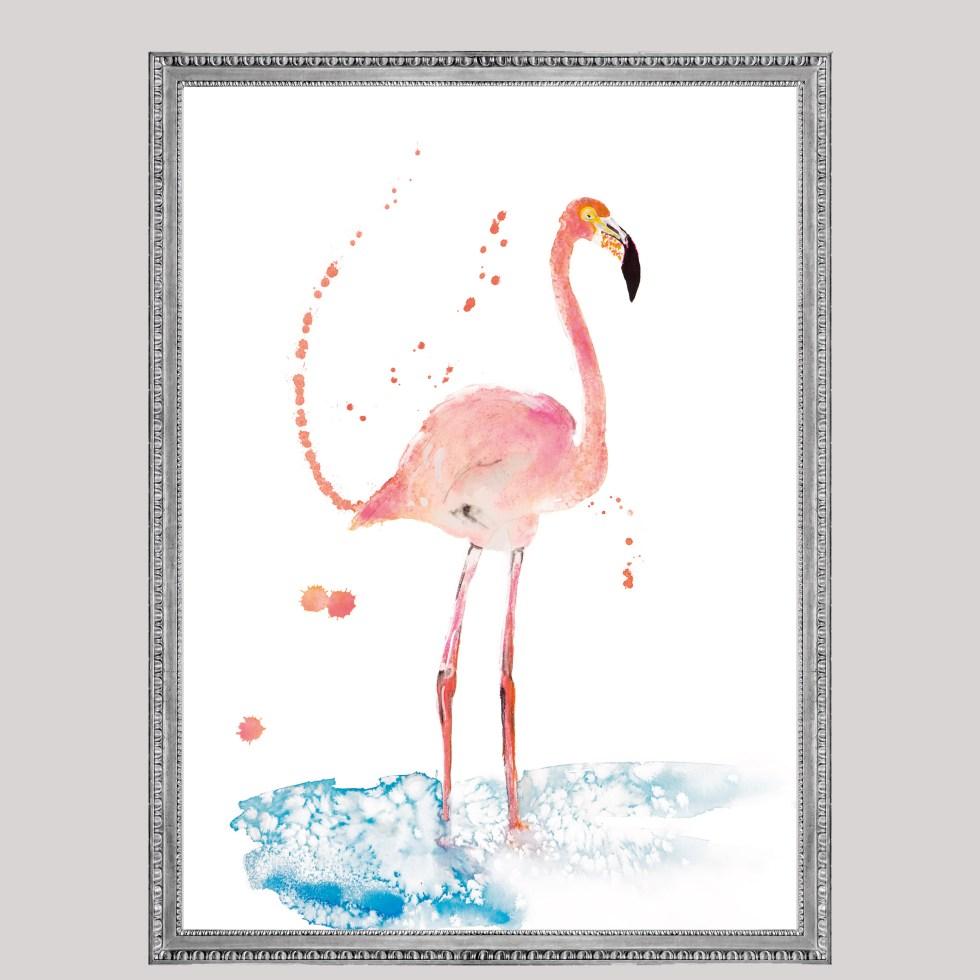 Flamingo bird, Natuurlijk Angelart, Angela Peters. Illustraties inkt Aquarel