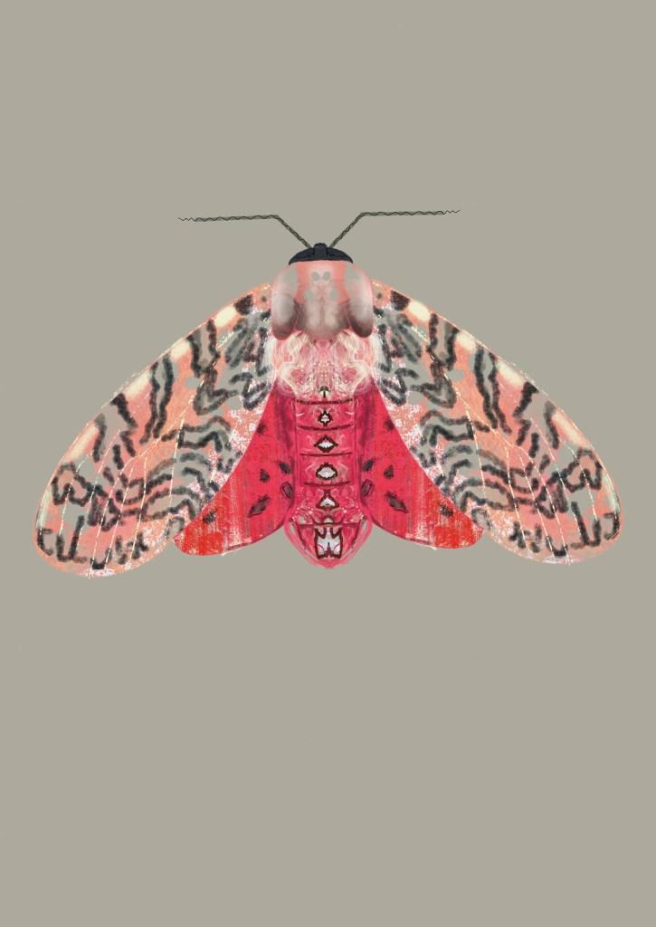 Rood roze mot illustratie A3 print Angela Peters, NatuurlijkAngelart