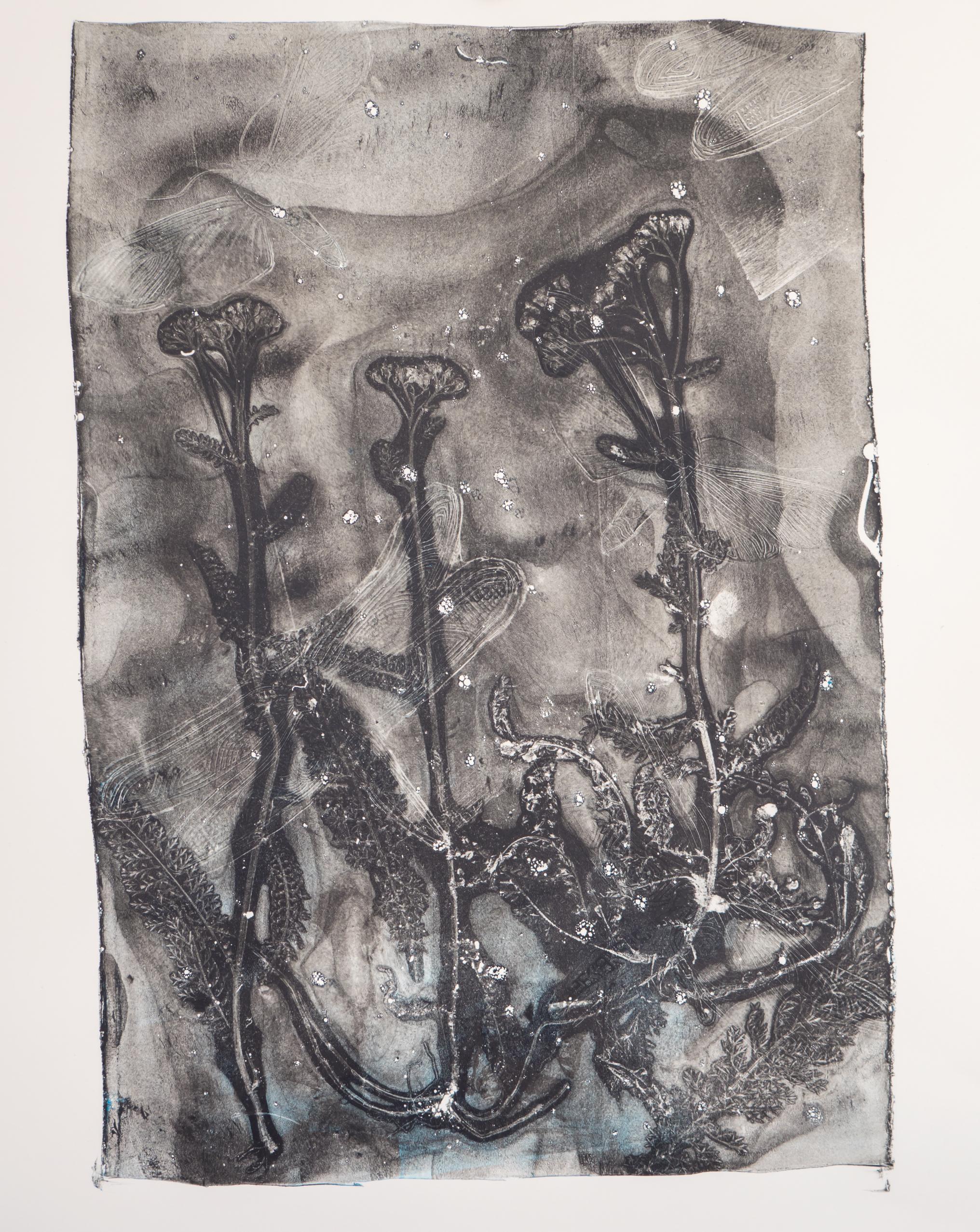 Gelatine druk, natuur print van Angela Peters bij Angelart Kunst&Zo