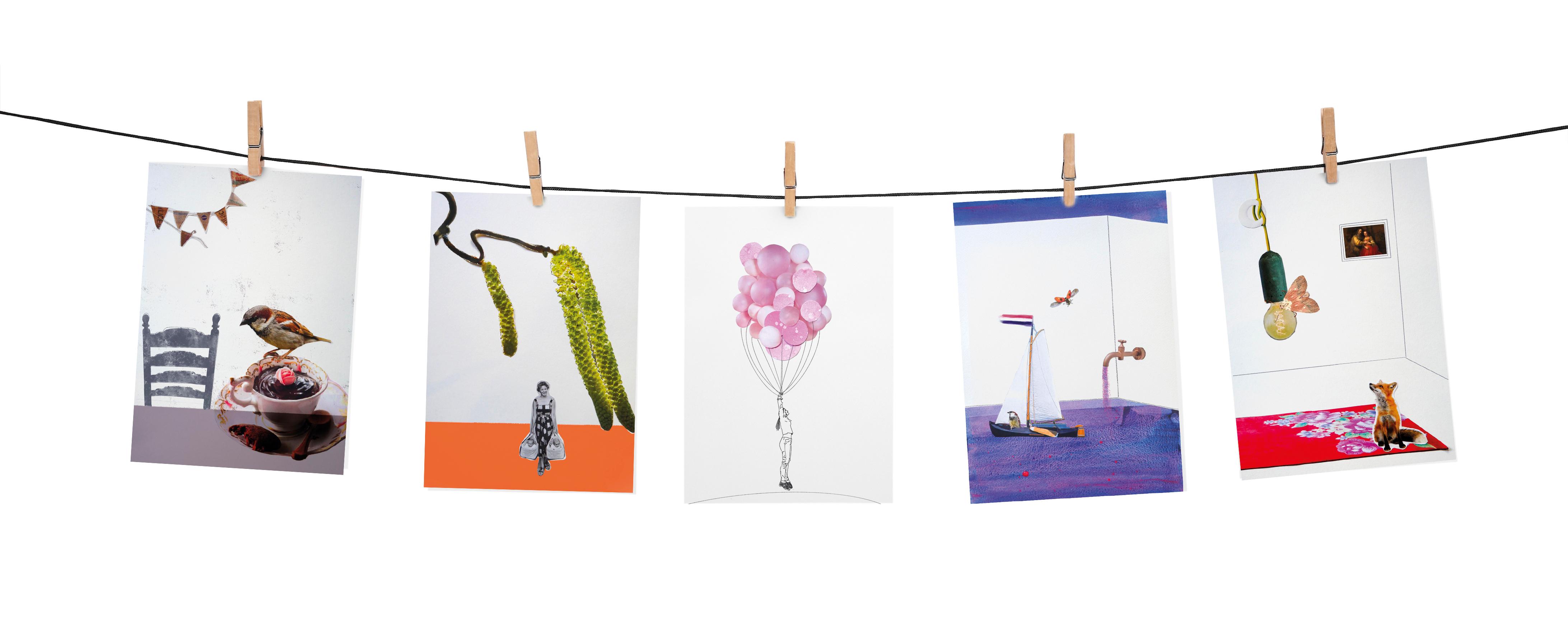 Angela Peters illustratie, dieren kaarten Angelart Kunst&zo kunst