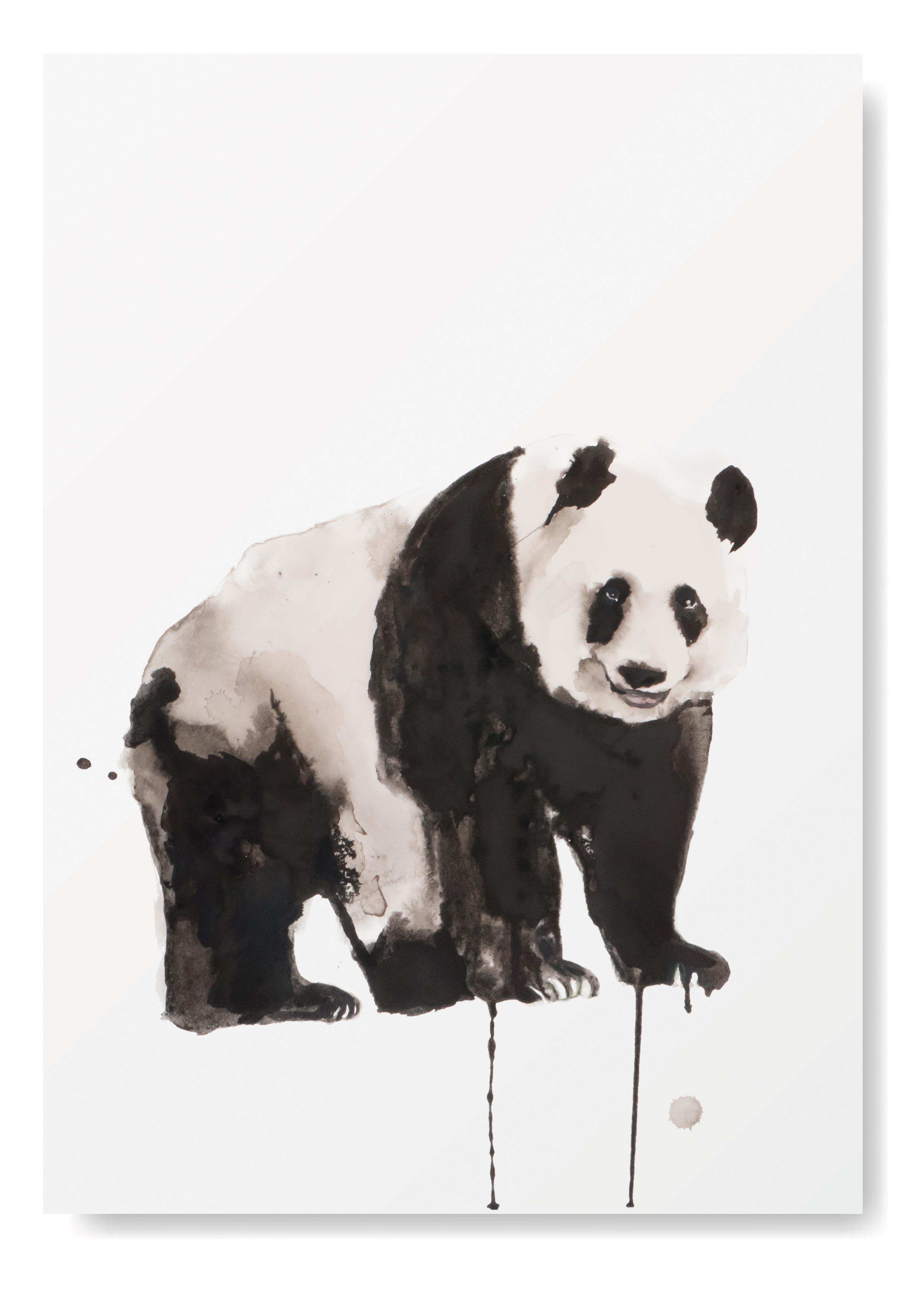 Angela Peters illustratie, dieren kaarten Angelart Kunst&zo panda