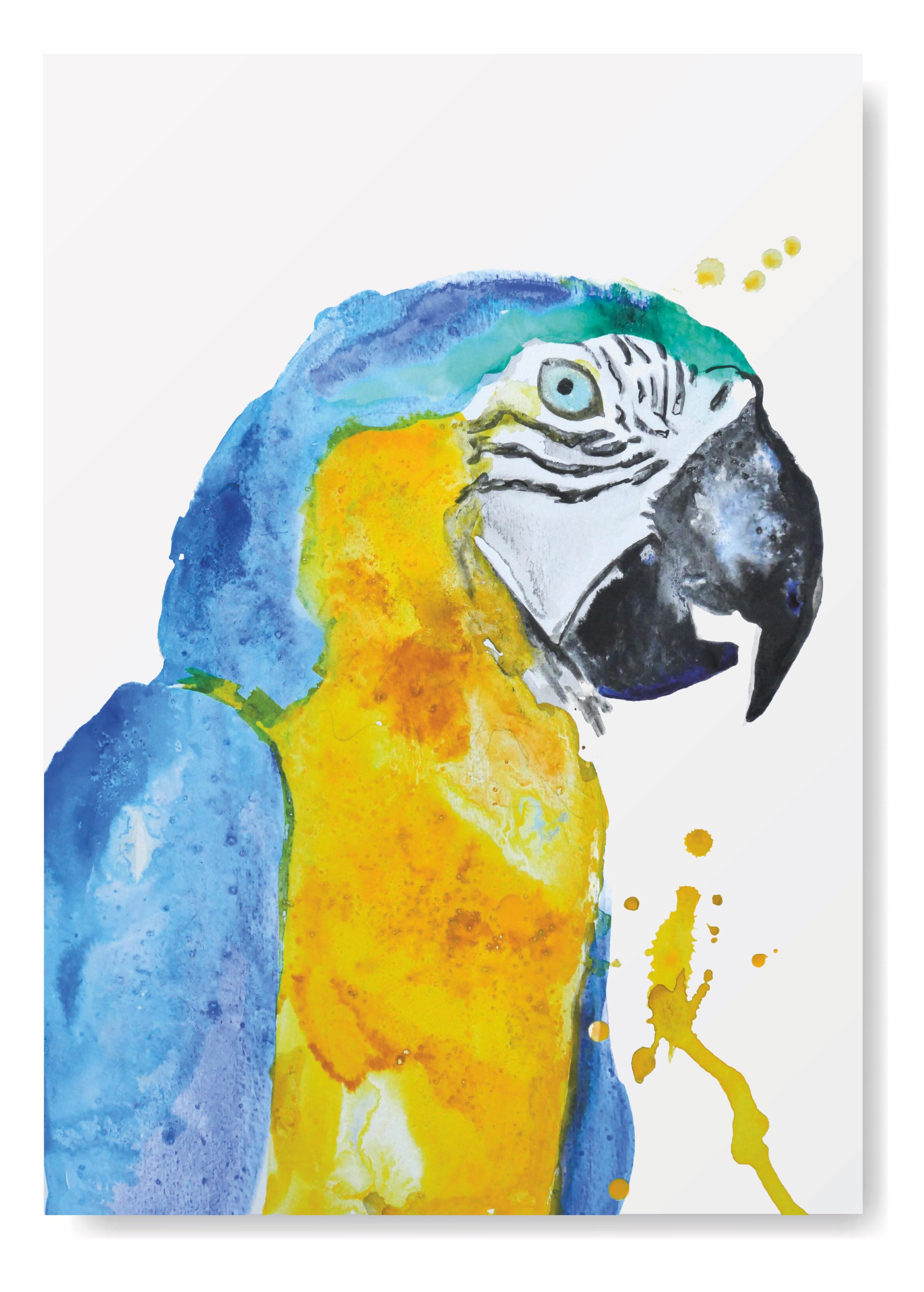 Angela Peters illustratie, dieren, vogel kaarten Angelart Kunst&zo