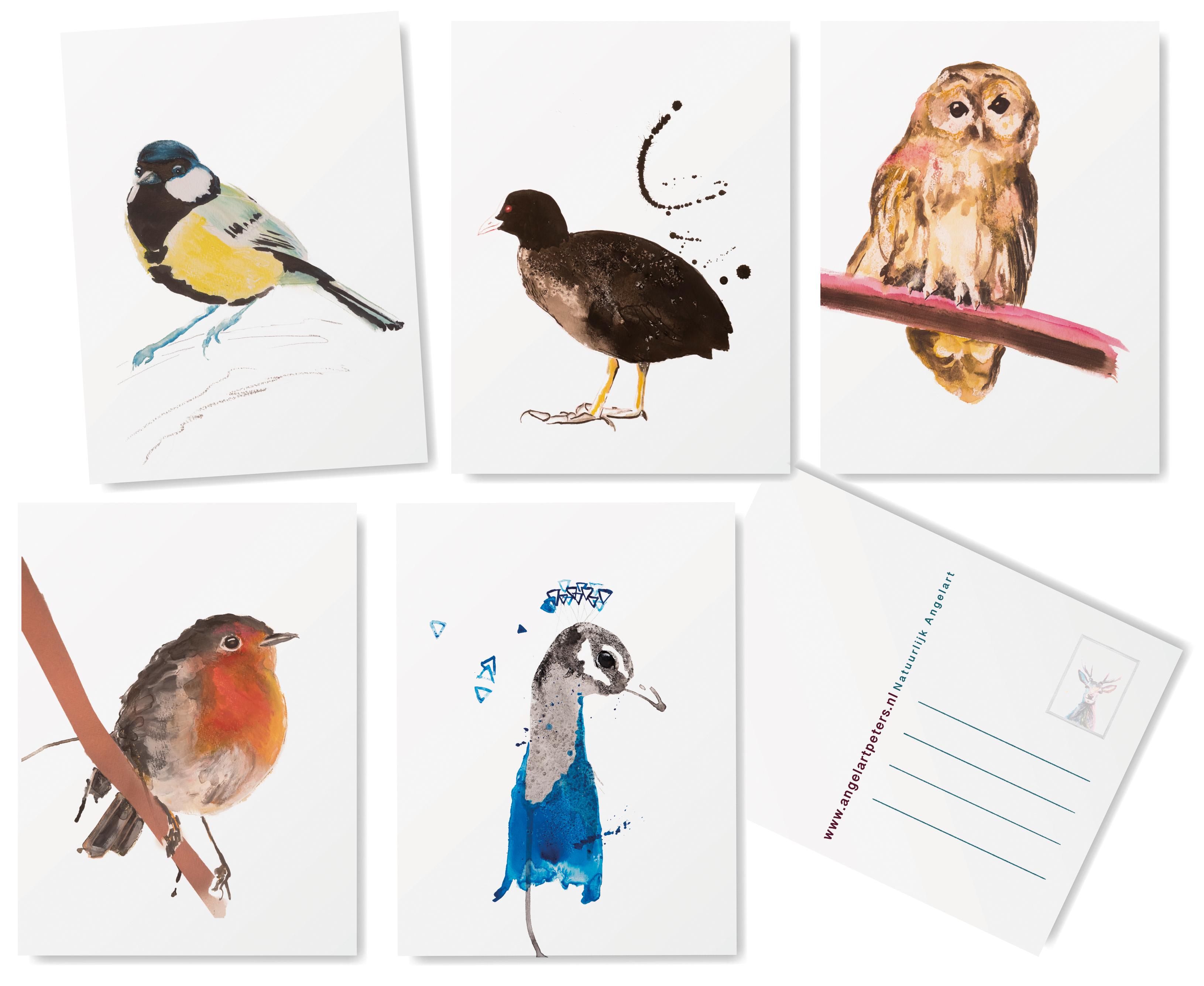 Inheemse vogel kaarten