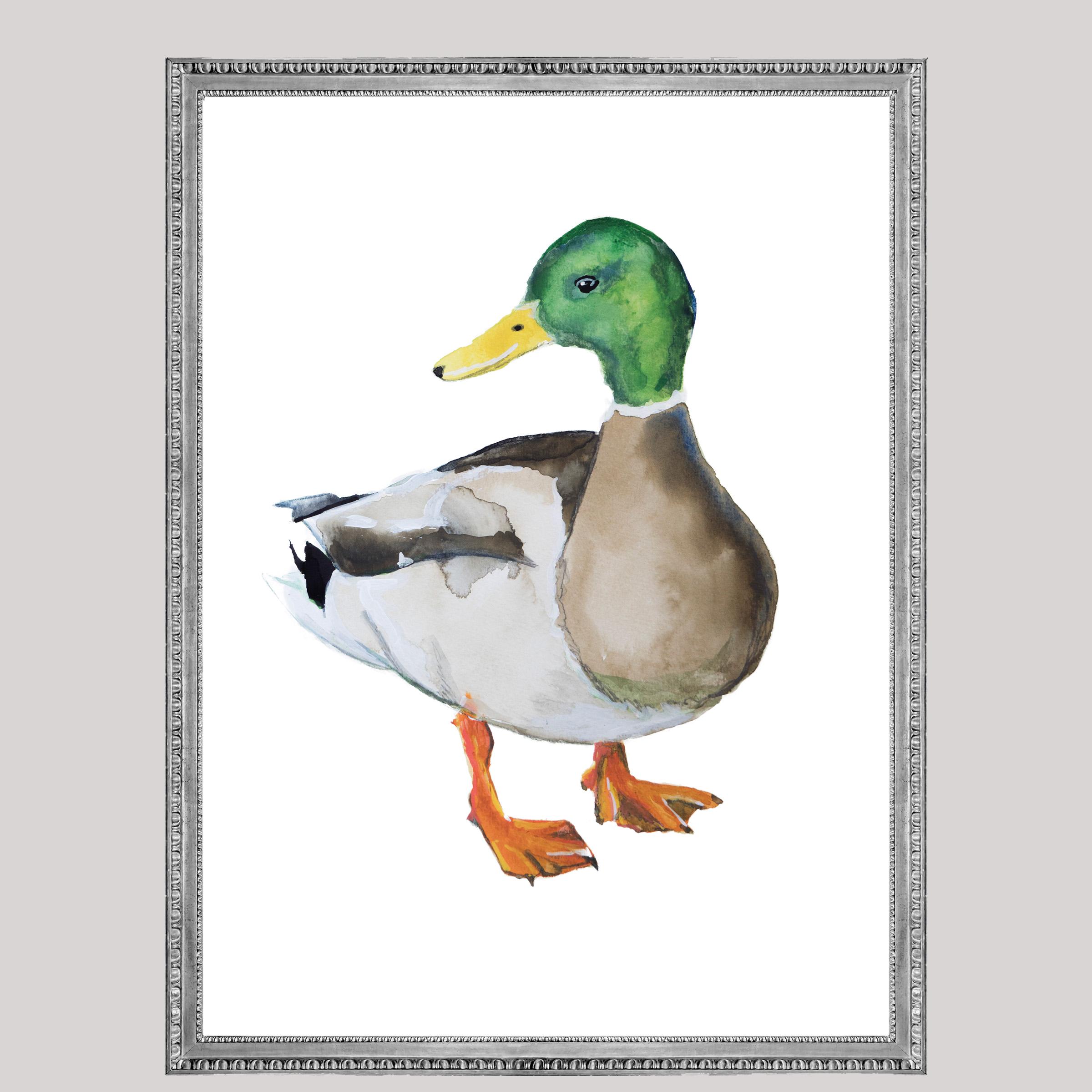 Eend Angela Peters illustratie, vogel kaarten Angelart Kunst&zo vogel poster