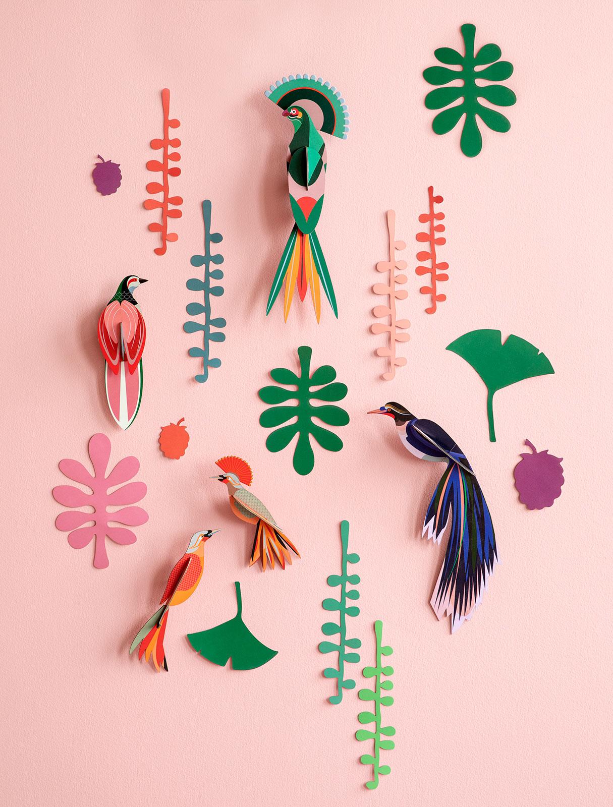 Tropische vogels en planten
