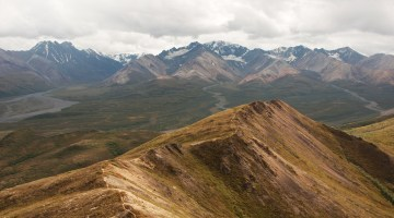 Hiking tips for Denali National Park