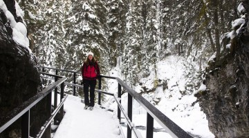 johnston_canyon