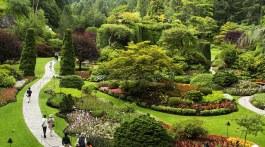 butchart_gardens