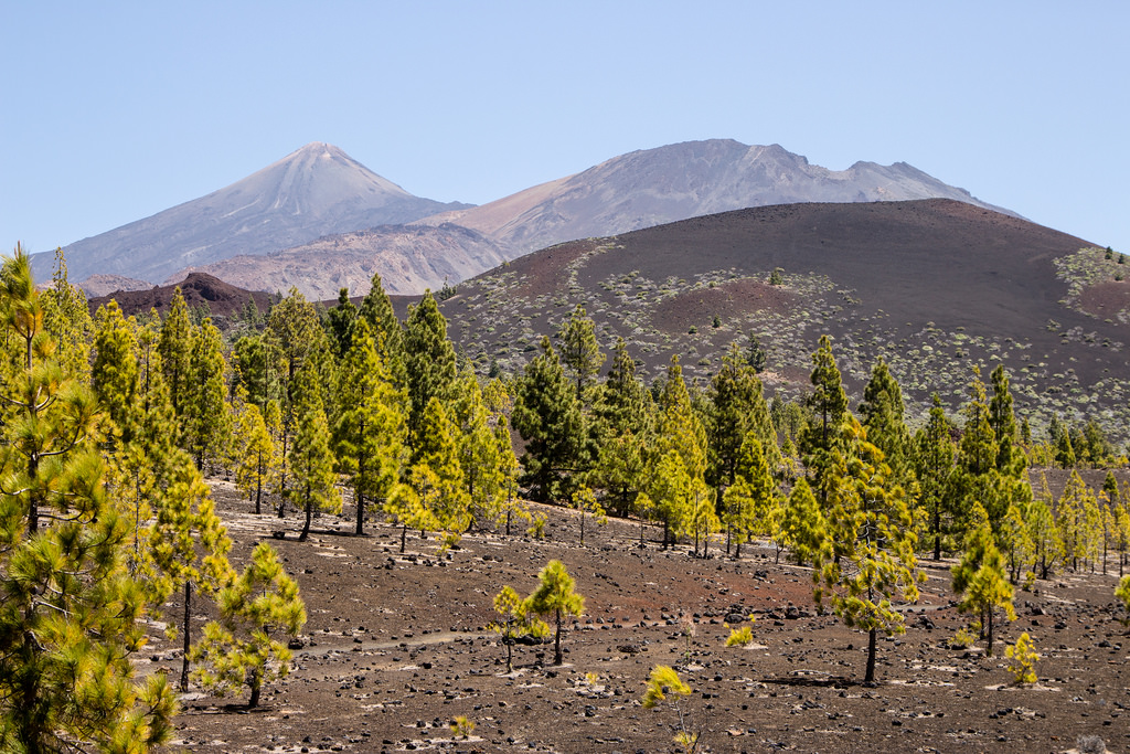 Spain's Highest Mountain: A Guide to Hiking Mount Teide