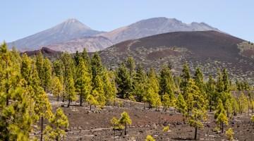 Teide National Park - A Guide to Hiking Mt. Teide