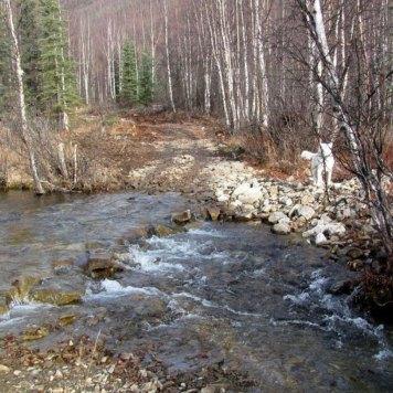 Angel-Creek-Crossing