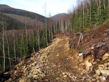 Sidehilling-near-Upper-Angel-Creek-Cabin