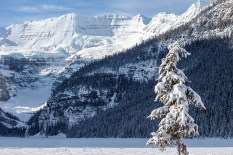 lakelouise-icewinter10
