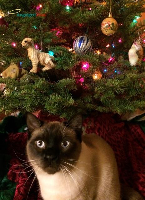 20141223-stitch-first-christmas