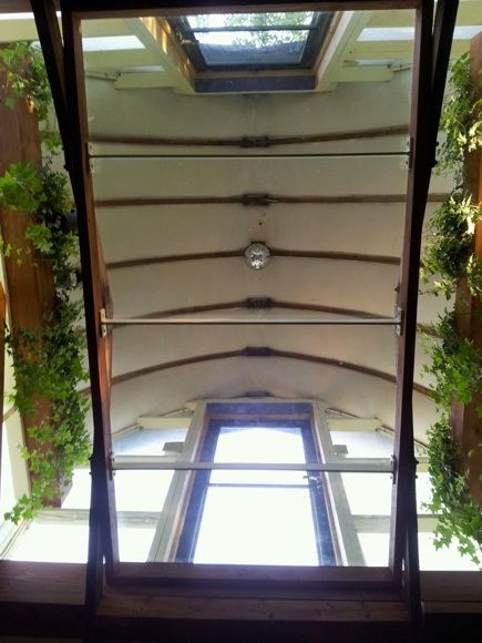 2013, detail of Cupola with glass walkway, Swedish ivy and disco ball