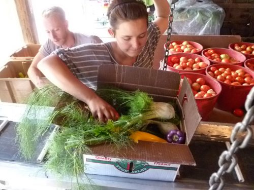 Alina Yaccino, former Angelic Organics employee and current site host at Pure Organic Juicery in Barrington, packs a box with characteristic joy