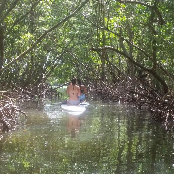 PaddleBoarding (5)