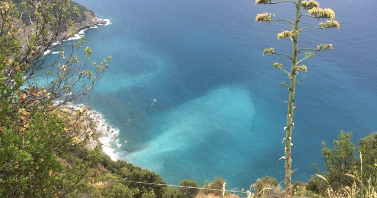 Hiking the Cinque Terre Trail