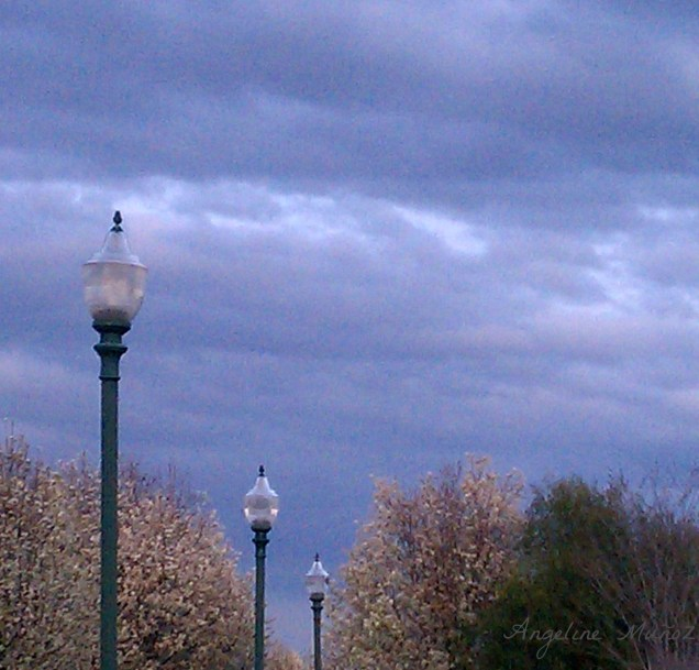 lampposts, trees, and clouds