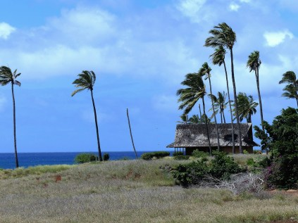 Molokai west