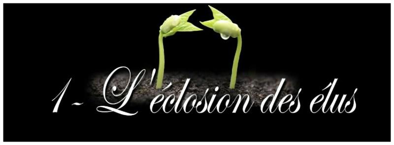 """l""""éclosion des élus"""