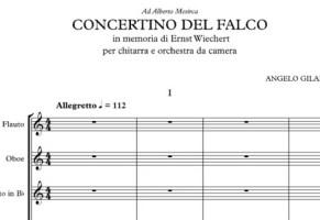 Concertino del falco – In memoria di Ernst Wiechert