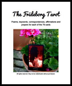 Frideborg Tarot Companion eBook Cover