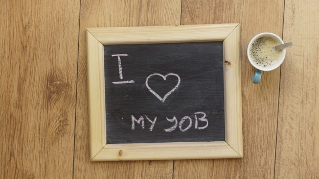 manifest your life purpose and love your job
