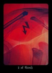 2 of Wands Frideborg Tarot Digital Version