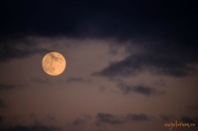 full moon in libra tarot