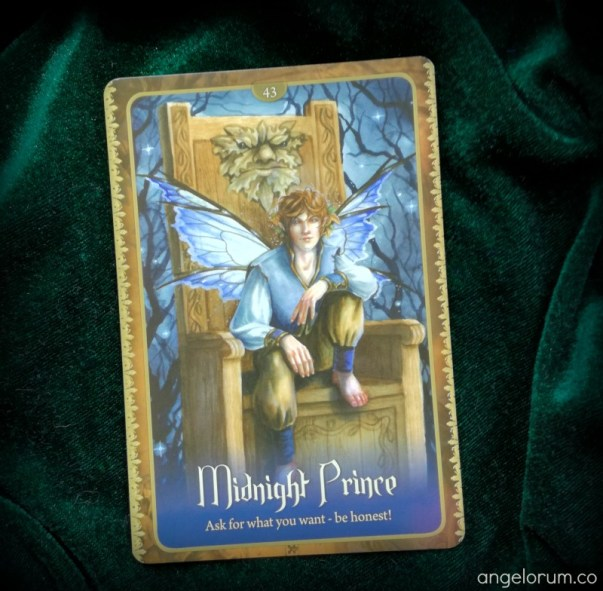 Midnight Prince from the Wild Wisdom of the Faery Oracle