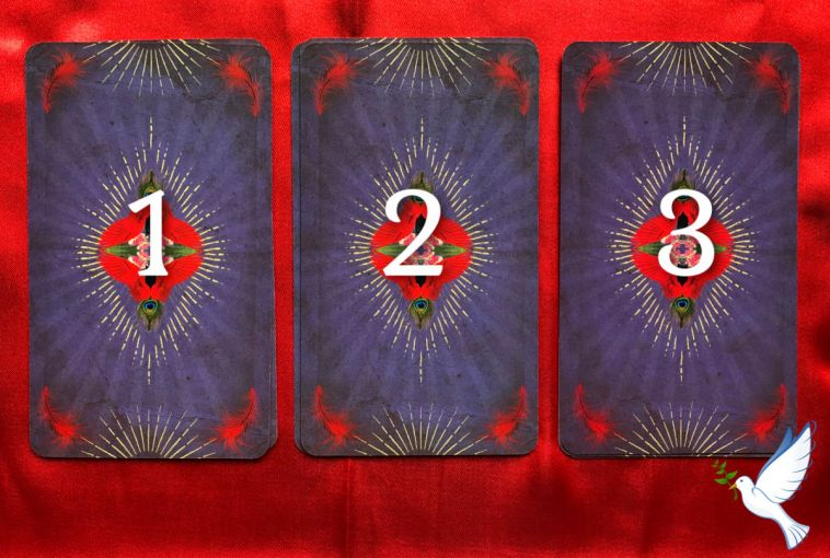 Tarot of Curious Creatures Pick a Pile Week Ahead Readings