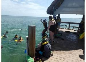 snorkeling lesson 3