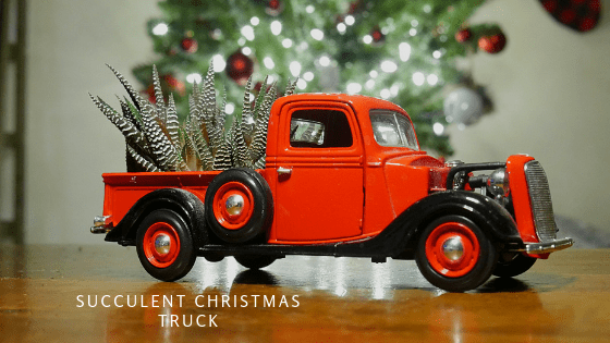 Christmas Red Truck.Succulent Christmas Red Truck Angel S Grove