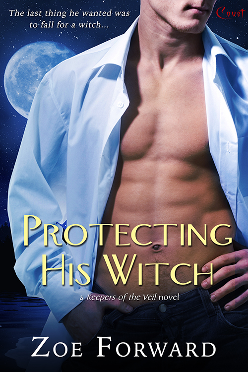 Protecting His Witch Book Cover