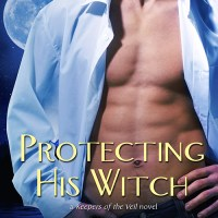 Review: Protecting His Witch (Keepers of the Veil, #1) by Zoe Forward