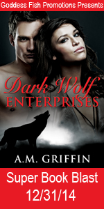 SBB_TourBookCoverBanner_DarkWolfEnterprises copy