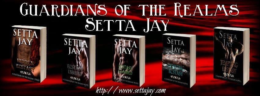 Setta Jay Banner