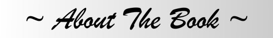 about-the-book-grey-banner