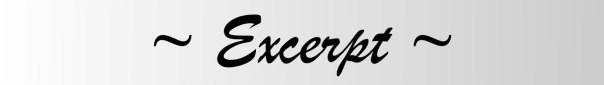 excerpt-grey-banner copy